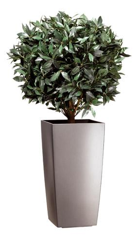 Plante pot interieur for Plante interieur ikea
